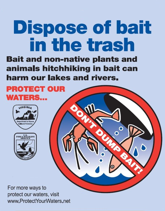 Dispose of Bait Opens in new window